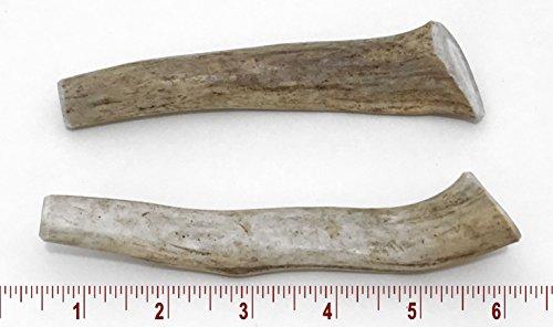 5-7'' Medium Deer Antler Dog Chew - 2 ct by Perfect Pet Chews (Image #4)