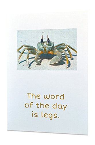 "Adult Funny Sexy Inappropriate Greeting Cards - All Occasions - ""The Word of The Day is Legs"" - Excellent Quality Printing + 100% Linen"