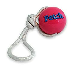 Planet Dog Orbee-Tuff Fetch Ball with Rope, Pink