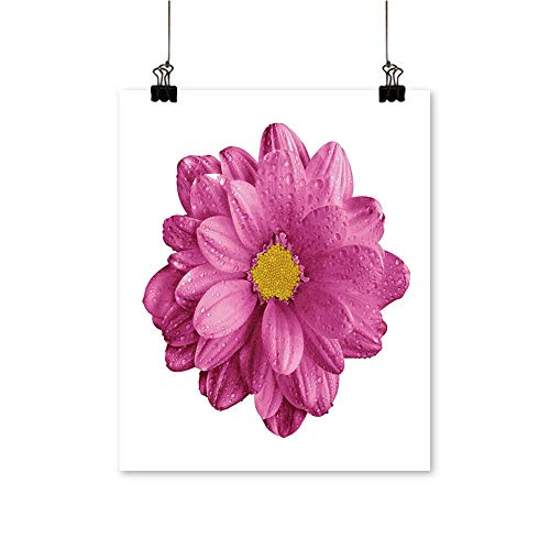 (Single paintingsurreal Chrome Pink Gerbera Flower Macro Isolate on White Office Decorations,24