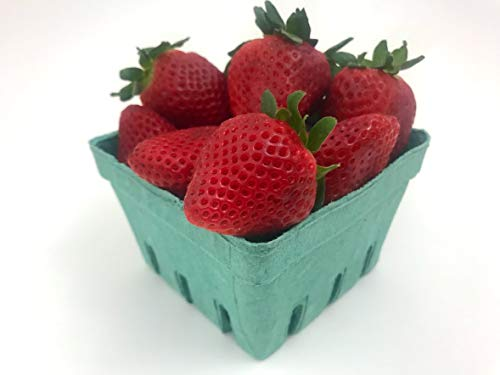 Quart Green Fiber Fruit/Berry Basket Container (25 Pack) for Strawberry Blueberries Tomatoes and -