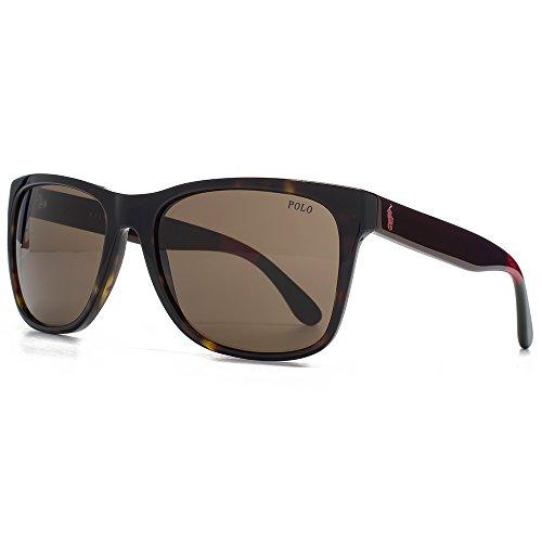 Polo Ralph Lauren Wayfarer lunettes de soleil Style en Havane foncée brillant PH4106 556873 57 brown