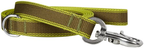 Waggo Stripe Hype Leash - Olive - Large - 6' x 1 inches