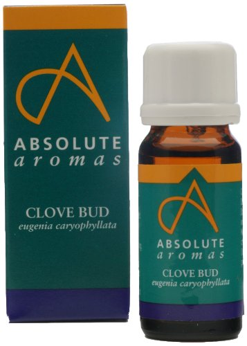 Absolute Aromas Clove Bud Essential Oil T142/10ml