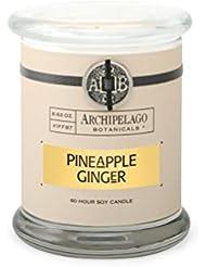 Archipelago Pineapple Ginger Glass Jar Candle, 8.62 oz.