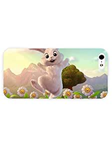 iPhone 5&5S case - Holiday - Easter Bunny64 3D Full Wrap for iPhone Case