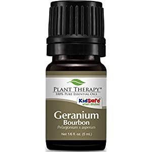 Plant Therapy Geranium Bourbon Essential Oil. 100% Pure, Undiluted, Therapeutic Grade. 5 ml (1/6 oz).