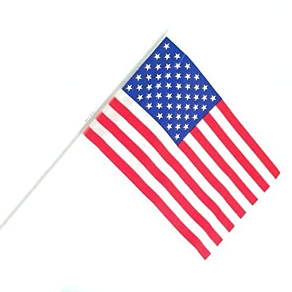 2ab5a395ca2e Image Unavailable. Image not available for. Color  US Toy - Mini Patriotic  Plastic American Flags