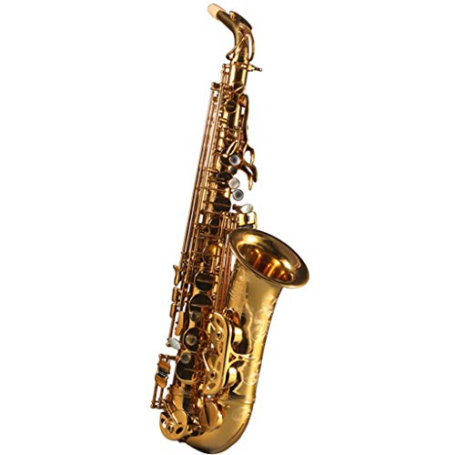 Saxophones Professional Playing Alto E-Flat Beginner Grading Tube Engraving Craft with Handbag Wind & Woodwinds (Color : Gold, Size : 6613cm)