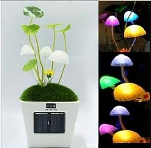 Firefly LED Solar Mushroom Ventana de luz de lámpara / MINI maceta / bonsai / Plantas verdes en la luz de la pared / noche, cambio de color automático, iluminación LED Romántico, regalo perfecto