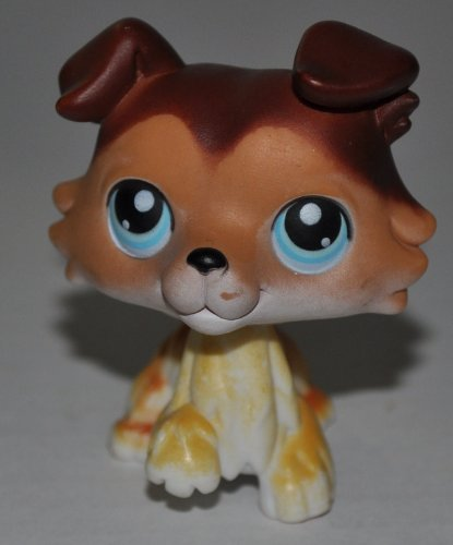 Collie #58 (Raised Paw, Brown, Blue Eyes) - Littlest Pet Shop (Retired) Collector Toy - LPS Collectible Replacement Single Figure - Loose (OOP Out of Package & Print)