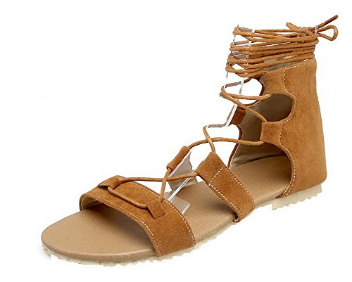 Toe up Open Lace Materials Solid Sandals WeenFashion Women's Blend Low Brown Heels qpg6zx0