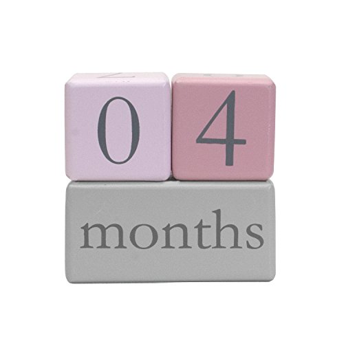 Child to Cherish Baby Monthly Milestone Photo Age Blocks, Pink (Pink Birth Announcement)
