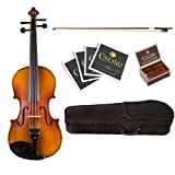 Cecilio CVA-500 Solidwood Ebony Fitted Viola, Size