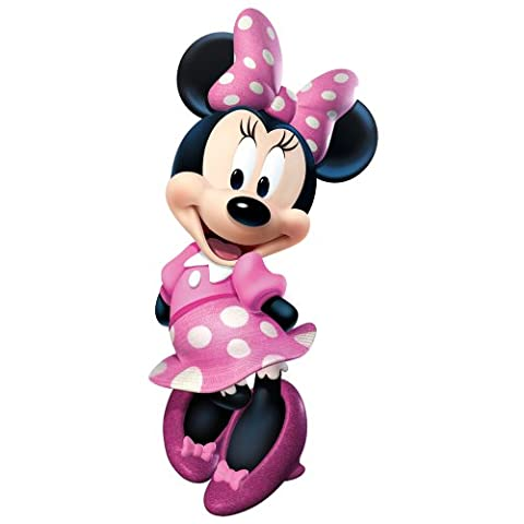 Minnie Mouse Edible Cake Topper Frosting 1/4 Sheet Birthday Party