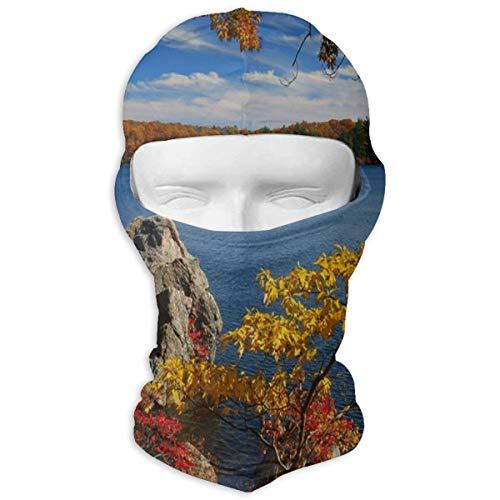 GREEDCLOUD Autumn Landscape Full Face Masks UV Balaclava Hood Ski Mask Motorcycle Neck Warmer Tactical Hood for Cycling Outdoor Sports Snowboard]()