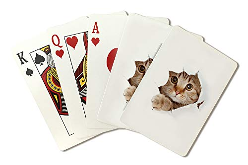 Hole Photography A-90228 (Playing Card Deck - 52 Card Poker Size with Jokers) ()