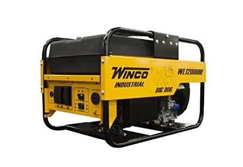 Winco WL12000HE Honda Engine 12000 Electronics Features