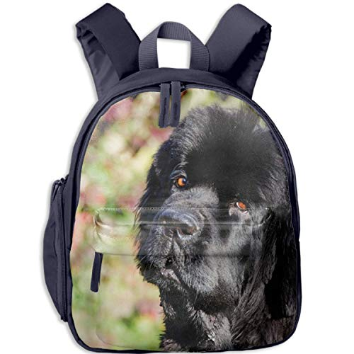 (Personalized Children's School Backpack Bookbag Shoulder Bags Newfoundland Dog Perfect Gift Idea For Family/Friends/Travelers/Co-Workers/Classmates)