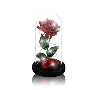 Beauty and The Beast Rose,Enchanted Red Silk Rose and Glass Dome Led Light with Fallen Petals Housewarming Gift for Valentine's Day Wedding Anniversary Mother's Day Party Supplies 32