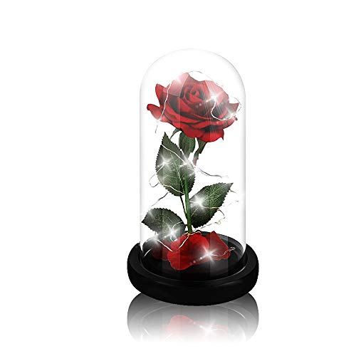 (Beauty and The Beast Rose,Enchanted Red Silk Rose and Glass Dome Led Light with Fallen Petals Housewarming Gift for Valentine's Day Wedding Anniversary Mother's Day Party Supplies)
