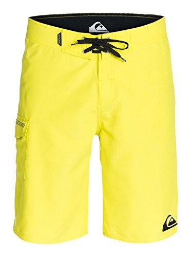 Quiksilver Men's Everyday 21 Inch Boardshort, Sulphur Spring, 34
