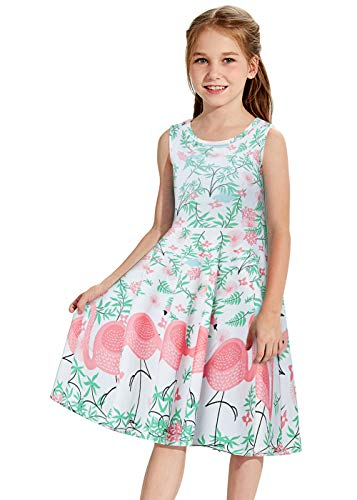 Toddler Sundress for Girls 3D Graphic Flamingo Twirly Girl Shorts Lovely Dance Tunic Summer Sleeveless Vintage Floral Swing Party Dresses Florida Costume Causal Toddler Skater Garments for Daily