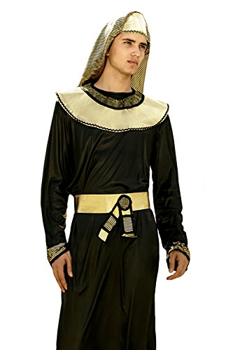 Ancient Egypt Costume And Makeup (Adult Men Egyptian Pharaoh Halloween Costume King of Egypt Dress Up & Role Play (One size fits most))