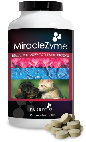 Probiotics for Dogs with Enzymes -Chewables (90ct) -Cats and Dog Tablets-Complete Digestive Remedy for Pets, Controls Gas, Loose Stool, Diarrhea, and More. Great Taste Dogs and Cats Love. Made in USA.
