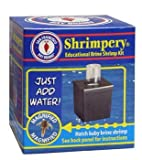 Brine Shrimp Shrimpery