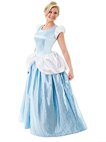 Little Adventures Deluxe Women's Cinderella Dress-Up Costume - Size Adult 2 - 4 (Adult Cinderella Dress)