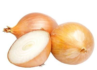 Onion, Candy Hybrid Seeds