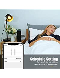 Bombilla de luz inteligente SEALIGHT Smart Wi Fi LED bombilla de cristal vintage Edison luz, A19, regulable, blanco suave 2700 K, no requiere bujía, funciona con Alexa y  Assistant, 2 unidades
