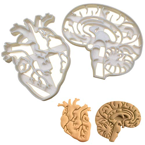 SET of 2 cookie cutters (Anatomical Heart & Anatomical Brain cookie cutters), 2 pcs, Ideal for Medical themed party -