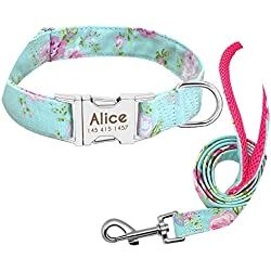 Krystal_Magic Dog Collar Custom Nylon Puppy Cat Dog Tag Collar Leash Personalized Pet Nameplate ID Collars Adjustable for Medium Large Dogs,Green,M