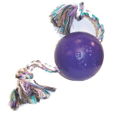 Romp And Roll Ball Dog Toy Size: 6 inch, Color: Purple, My Pet Supplies