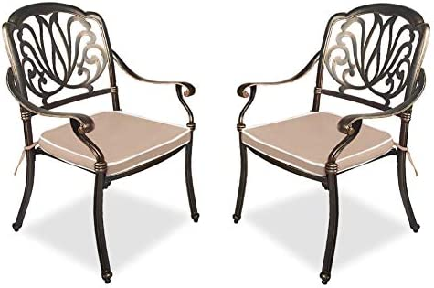 TITIMO 2 Piece Outdoor Bistro Dining Chair Set Cast Aluminum Dining Chair
