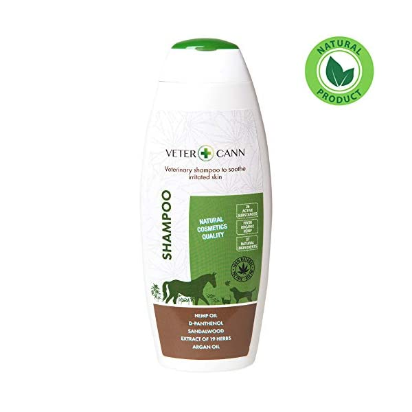 Vetercann Hemp for Pets – Natural Hemp Shampoo – 250ml – For Frequent Care of your Animal's Coat