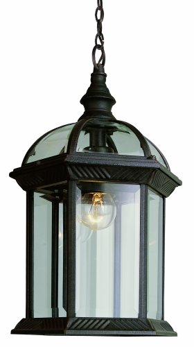 (Trans Globe Lighting 4183 RT Outdoor Wentworth 17.5