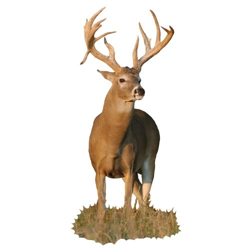 Mossy Oak Graphics ( 22012-C) 'Deer Whitetail Buck with Right Drop Tine' Cut-Out Indoor Graphics