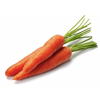 Organic Carrot 'Berlicum 2' (Daucus Carota) Vegetable Plant Seeds, Medium Early Heirloom : Garden & Outdoor