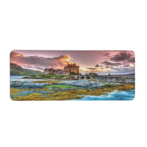 (TecBillion Scenery Decor Fashionable Long Door Mat,Dreamy Ancient Times Middle Age Inspired Princess Castle Near Lake Stones Moss for Home Office,23.6