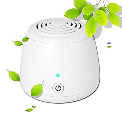 Dream's Story Ionic Air Purifier USB Portable Air Ionizer Ozone Freshener Remove Cigarette Smoke, Odor Smell, Bacteria, Mini Air Cleaner for Small Bedroom, Pets Room, Refrigerator, Car, Traveling