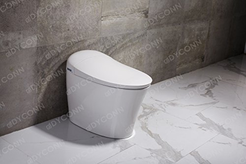 Dyconn Faucet Arial Tankless All In One Combo Bidet