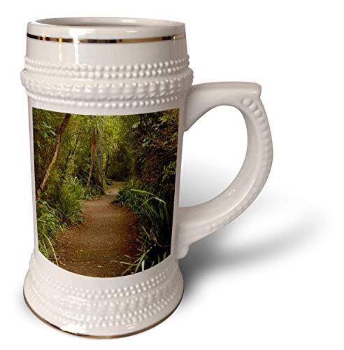3dRose Danita Delimont - New Zealand - Forest Path, Thompsons Bush, Invercargill, South Island, New Zealand - 22oz Stein Mug (stn_312950_1) (Best Hiking Trails In New Zealand South Island)