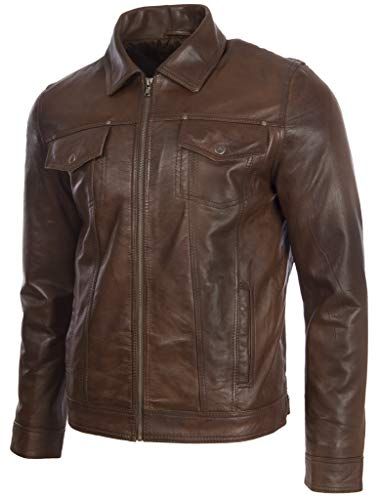 In Giacca Uomo agq5 Vera Classica Pelle Nevada Harrington Brown Aviatrix wTISZqI