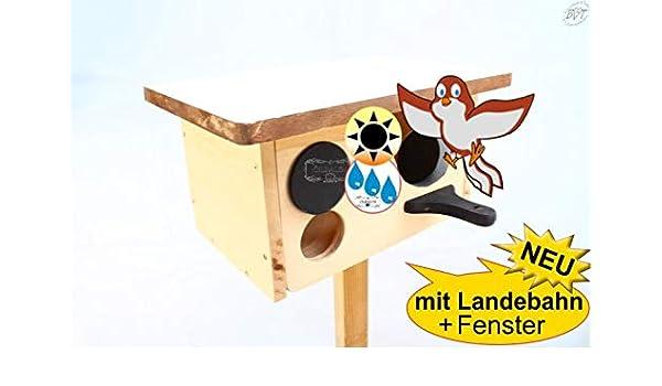 Caja nido grande XXL Casa de pájaros, casa de pájaros, protección ...