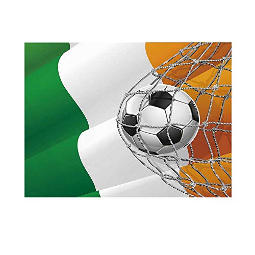 Irish Photography Background,Sports Theme Soccer Ball in a Net Game Goal with Ireland National Flag Victory Win Backdrop for Studio,10x10ft