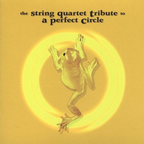 The String Quartet Tribute to a Perfect Circle