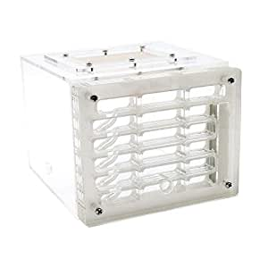 MBLUE Caja Cuadrada de acrílico plástica de la exhibición de acrílico de la Jaula del Insecto de la jerarquía de la Vivienda de la Hormiga: Amazon.es: ...